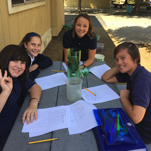 Middle School Science Collaboration Project Girls